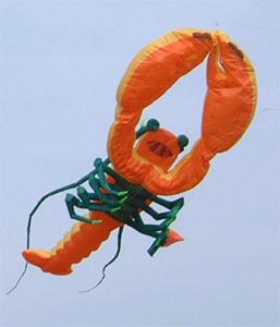 6m Lobster