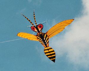 Wind Wasp